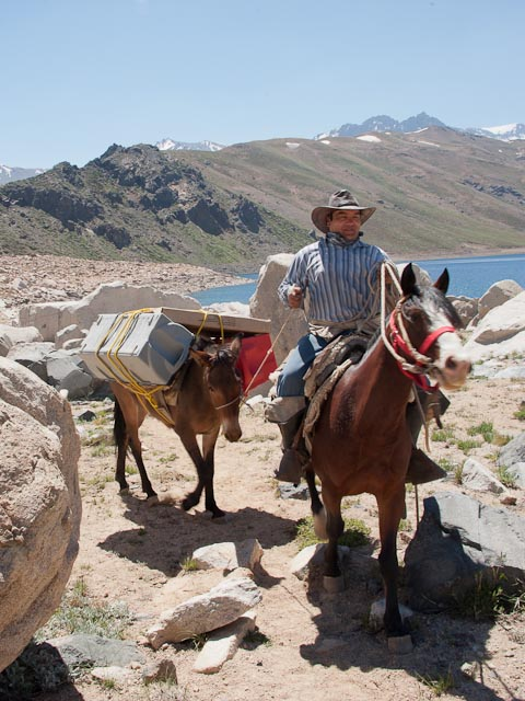 Oliver, one of the arrieros (Chilean cowboys) who helped PLL resolve its transportation problem, leads a mule laden with equipment into PLL Base Camp. Credit: Henry Bortman