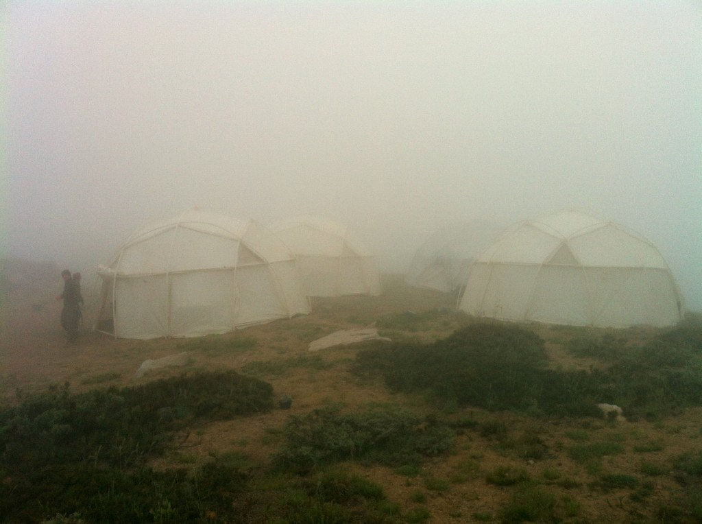 Foggy Dome tents